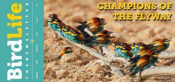 Champions of the Flyway – from dream to Game Changer?